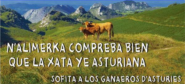 La presión social fai qu'Alimerka retome los contratos colos ganaeros de Xata Asturiana
